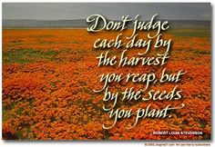 Don't judge each day by the harvest you reap, but by the seeds you plant. #perseverance