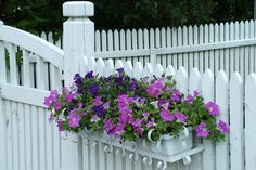 This White Fence goes peacefully hand in hand with a Gate, carrying a lovely tray of purple flowers.  www.whitefence.com