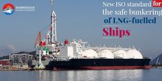 Everyone in the shipping industry should right about now update their information and knowledge about the new ISO standard rules set for the use of LNG fuels. Keep reading to find out more about the same. Why Do Cats Purr, What Cats Can Eat, Down Syndrome Cat, Cats And Cucumbers, Cat In Heat, Cat Hug, Cat Vs Dog, Dancing Cat, Cats Musical
