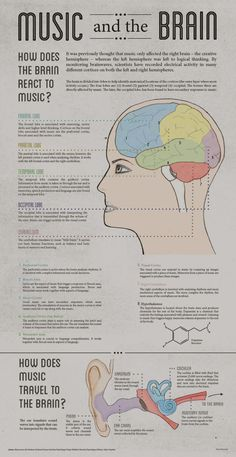 Infographic created for class. I researched the effects that music has on the brain. I wanted to highlight that every lobe is active when listening to music.I wanted to establish a style that is both elegant and structured in order to mesh the topics of… Anxiety Remedies, Natural Remedies For Anxiety, Sleep Remedies, Music And The Brain, The Human Brain, Brain Facts, Brain Science, Life Science, Computer Science
