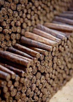 Business Development, Branding, Website & Logo Design, Digital Marketing and more. Good Cigars, Cigars And Whiskey, Cuban Cigars, Cohiba Cigars, Cigar Shops, Cigar Club, Premium Cigars, Cigar Accessories, Cigar Humidor