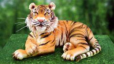 3D Tiger Cake tutorial just got published! -