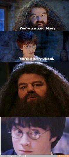 Hahaha Harry Potter humor...