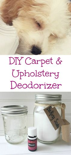 Two ingredient for this easy DIY Carpet Upholstery Deodorizer