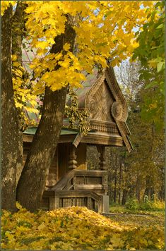 Autumn Forest, Russia. This structure is fantastic. I have always wanted a house like this in the forest! SWEET!
