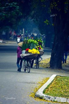 #hanoi #vietnam