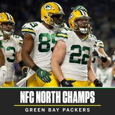 NFC North Champs 2016-2017 season.