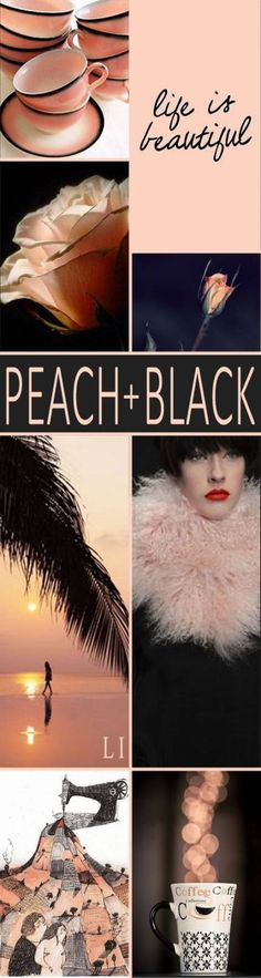 Lu's Inspiration - peach and black colour palette Colour Pallette, Colour Schemes, Color Trends, Color Combos, Color Patterns, Color Harmony, Color Balance, Wedding Color Pallet, Wedding Colors