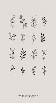 This bundle includes 50 unique botanical floral illustrations which you can use for logos, invitations, stationery, patterns and much more. This design kit is drawn in Illustrator, vector based and high quality.