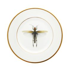 Discover the Melody Rose Dragonfly Side Plate at Amara