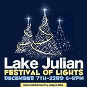 What a fun Christmas tradition to start in our family to go to see the Christmas lights at Lake Julian every year.