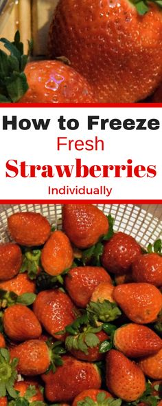 It's just about time for fresh strawberries. Lean how to freeze them individually so you can simply reach into the freezer and take out a nice red frozen strawberry. Frozen strawberries are a treat on a hot summer day. Freezing Strawberries, Freezing Fruit, Frozen Strawberries, Freezing Vegetables, Frozen Meals, Frozen Fruit, Crockpot, Fruit Preserves, Summer Treats