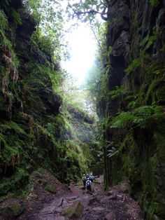 This mossy chasm in Staffordshire. | Known as Lud's Church (or Ludchurch), this damp, hidden pathway surrounded by vertiginous mossy rocks in the Peak District has been considered holy by pagans and Christians alike. According to internet folklore it's been a hiding place for Bonnie Prince Charlie, Robin Hood and Friar Tuck.