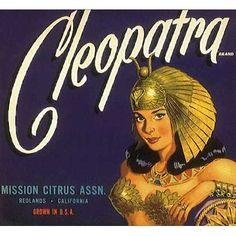 Vintage Labels, Vintage Ads, Vintage Images, Retro Advertising, Vintage Advertisements, Vintage Book Covers, Fruit Art, Vintage Travel Posters, Old Ads