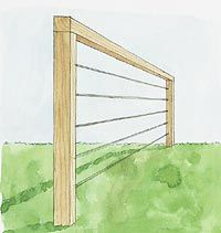 Building An Espalier = Living Fence - Using standard pruning techniques, you can train dwarf fruit trees to form a living wall that will enhance your yard's privacy and provide beauty and fresh produce.