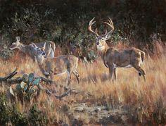 """The Courtship"" whitetail painting oil/board Brian Grimm Wildlife Paintings, Wildlife Art, Deer Drawing, Drawing Stuff, Deer Art, Moose Art, Whitetail Deer Pictures, Sketching Tips, Deer Hunting"
