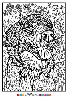 Free printable Bernese Mountain Dog coloring page available for download. Simple and detailed versions for adults and kids.