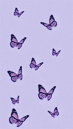 Images By Niina On Purple Aesthetic | Butterfly Wallpaper