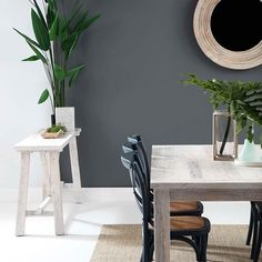 Coastal cool with our New Haven dining table, console and Cristo chair in navy styled with luscious botanicals. Trending wall colour is Teatree by @duluxaus #ozdesignfurniture #interiors #home #coast #botanicals #style #design #homedecor #homewares #styling #decorator #dining #furniture #L4L #tagforlikes