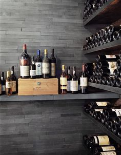 Modern Wine Cellar Design, Pictures, Remodel, Decor and Ideas - page 6