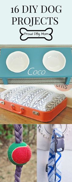 16 Dog DIY Projects | DIY Dog Beds | DIY Dog Collars | DIY Dog Toys | DIY Dog Bowls |
