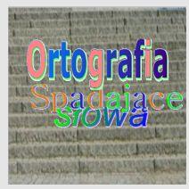 https://play.google.com/store/apps/details?id=com.thernat.spadlitery&hl=pl