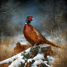 Responsible hunting, game management and wildlife conservation are important aspects of any wild game hunting, but many find the challenge of deer hunting to be the most challenging. Here are some ideas and deer hunting tips to make y Wildlife Paintings, Wildlife Art, Animal Paintings, Oil Paintings, Hunting Art, Coyote Hunting, Turkey Hunting, Archery Hunting, Pheasant Hunting