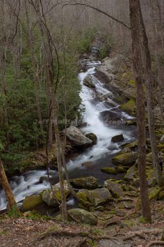Middle Prong Trail, water falls, Indian flats falls, Tennessee, Great smoky mountains national park, gsmnp, waterfalls, hiking, trails, outdoors, jmullinspics, Jeff Mullins Photography