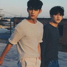 Mingyu and S.Coups from Seventeen