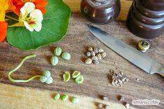 Butcher Block Cutting Board, Bamboo Cutting Board, Spice Rub, Spices, Health, Kitchen, Food, Mary, Hacks