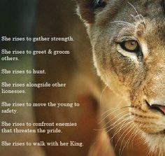 Lioness Arise! ❤️ it.