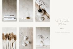 AUTUMN STILL LIFE by PIIRTO PHOTOGRAPHY Digital Photography, Fashion Photography, Facebook Header, Still Life Photos, Build Your Brand, Be Still, Web Design, Place Card Holders, Autumn