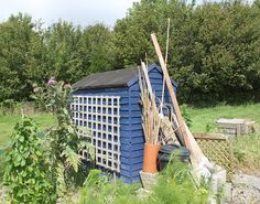 A photo study of allotment sheds of Dorchester