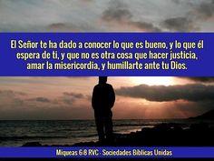 Miqueas 6:8 Reina-Valera 1960   Oh hombre, él te ha declarado lo que es bueno, y qué pide Jehová de ti: solamente hacer justicia, y amar misericordia, y humillarte ante tu Dios.
