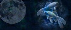 16.09.2016 – Vollmond in Fische: Der Auftritt einer wahren Dramaqueen