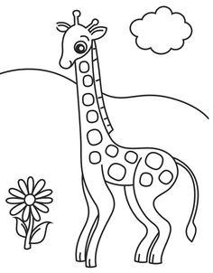 Seeing Giraffes Flowers