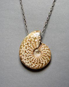 "Ammonite Fossil Necklace (22"" sterling chain-2 1/2- 3 1/2"") $165.00 http://josephbrooksjewelry.com/"