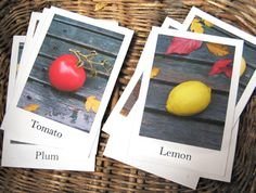 printable flash cards..I love this site!