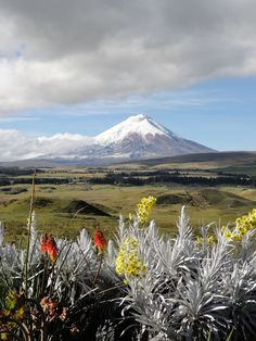 Cotopaxi Volcano, Ecuador. Travel Consultant Adam breaks down the top 5 climbs in South America, including Cotopaxi: http://news.southamerica.travel/top-5-south-america-climbs-insiders-guide/