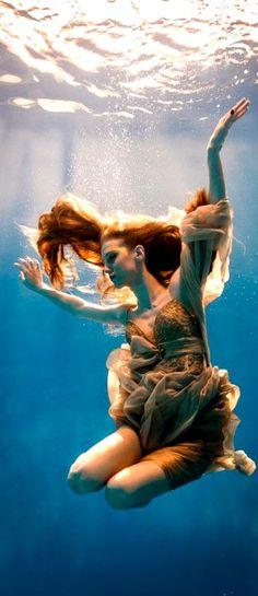 Underwater Photography                                                       …