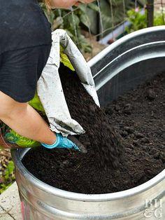 17 Best Container Vegetables Garden for Beginning www.onechitecture...