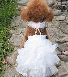 Jooyi Luxury Doggie Ruffled Wedding Bridal Dress Elegant Cat Floral Princess Tutu Ball Gown Puppy Multi-layer Lace Skirt with pearls necklace. (White, M) >>> To view further for this item, visit the image link.