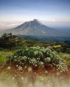 Gunung Merapiadalahgunung berapidi bagian tengahPulau Jawadan merupakan salah satu gunung api teraktif diIndonesia. #bukanindonesiabiasa @nikonindonesia @lazada_id