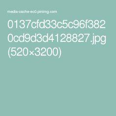 0137cfd33c5c96f3820cd9d3d4128827.jpg (520×3200)