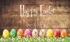 We wish you all a very very Happy Easter Images. Easter is one of the important festivals of Christianity. You can also use the latest Easter 2020 Images. Happy Easter Gif, Happy Easter Photos, Happy Easter Wallpaper, Happy Easter Wishes, Happy Easter Greetings, Happy Pics, Thanksgiving Wallpaper, Birthday Greetings, Happy Birthday