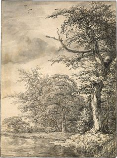 Jacob van Ruisdael (1628 or 9–1682)  Sun-Dappled Trees on a Stream. /  Point of brush, black and gray washes, over slight indications in black chalk, on paper; framing line in brown ink. - The Morgan Library  Museum.