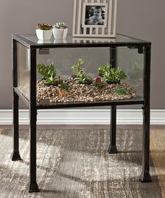 They also have a terrarium coffee table! Terrarium Display End Table flash sale / overstock - I want! Terrarium Table, Glass Terrarium, Garden Terrarium, Ideias Diy, Glass House, End Tables, Entryway Tables, Sweet Home, Indoor