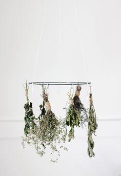 DIY: herb drying rack