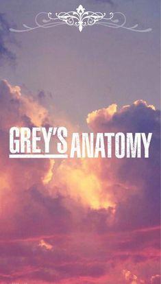 Download Greys Anatomy Torrents Kickass Torrents Grey