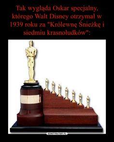 Dla dzieci specjalnej troski Wtf Funny, Funny Memes, Wow 2, Life Humor, Dreamworks, Pixar, Walt Disney, Fun Facts, Haha